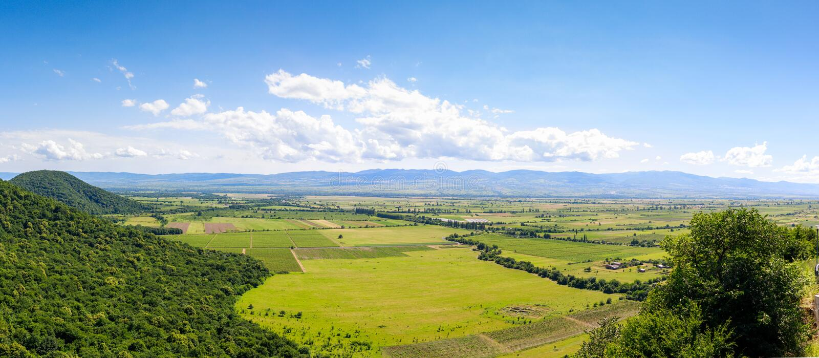 Panoramic view of the Alazani valley from the height of the hill. Kakheti region stock photo
