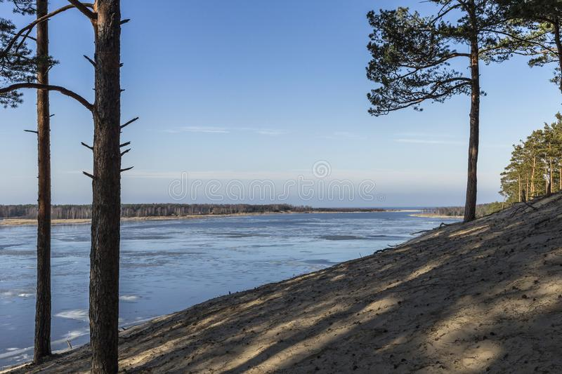 Panoramic view of the Baltic dunes, Balta kapa - Lielupe - Jurmala. royalty free stock images