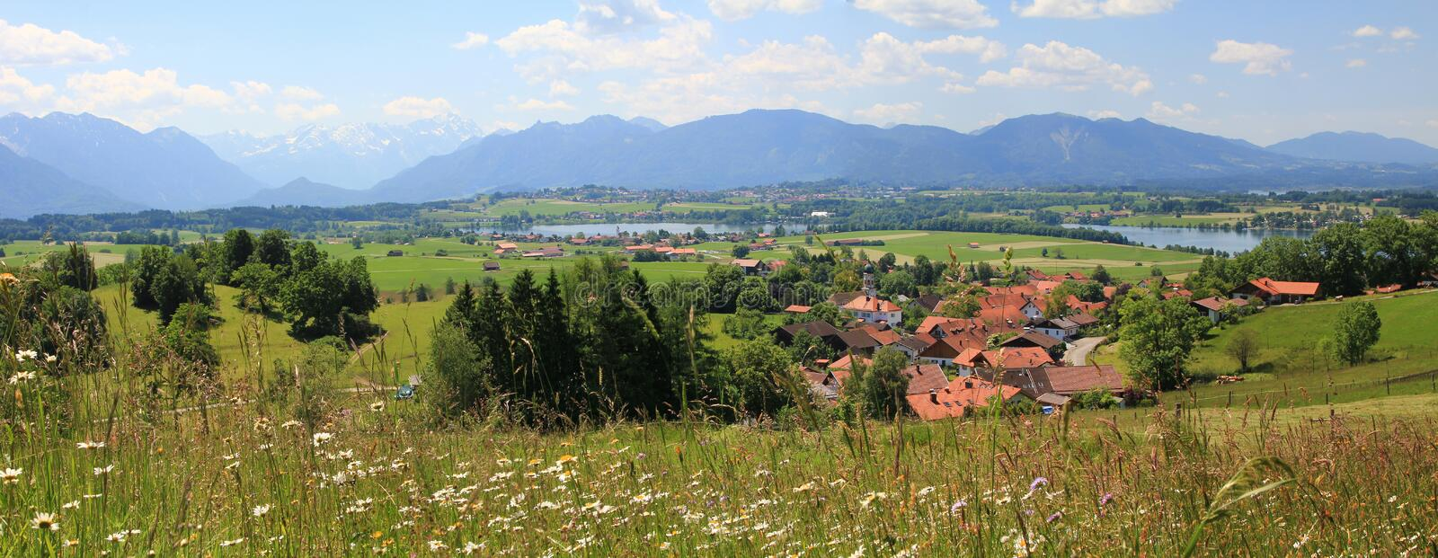 Panoramic view bavarian foothills, with wildflower meadow and la stock images