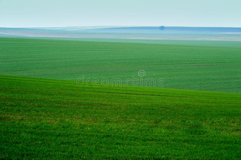 Panoramic view of beautiful agicultural fields and dirt road. Morning panoramic view of beautiful agicultural fields and dirt road royalty free stock photography