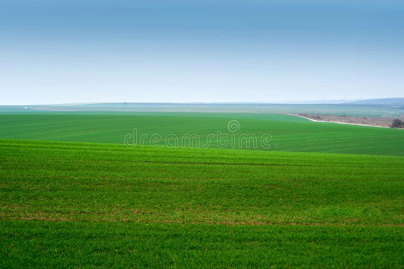 Panoramic view of beautiful agicultural fields and dirt road. Morning panoramic view of beautiful agicultural fields and dirt road stock images