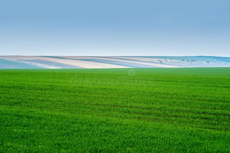 Panoramic view of beautiful agicultural fields and dirt road. Morning panoramic view of beautiful agicultural fields and dirt road stock photos