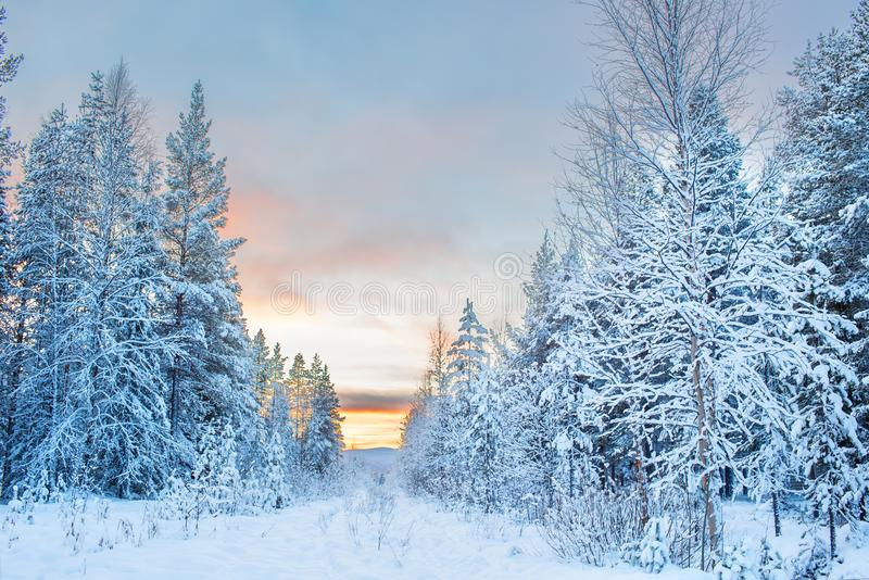 Panoramic view of beautiful and dramatic winter sunset landscape royalty free stock images