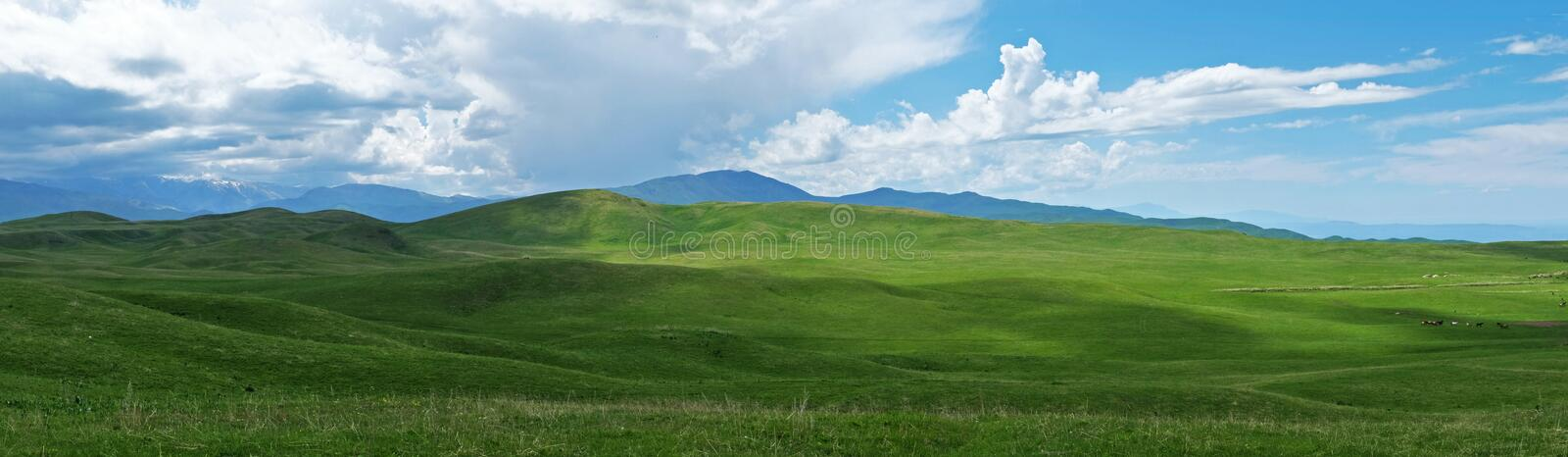 Panoramic view of beautiful green hills on sunny day stock photography