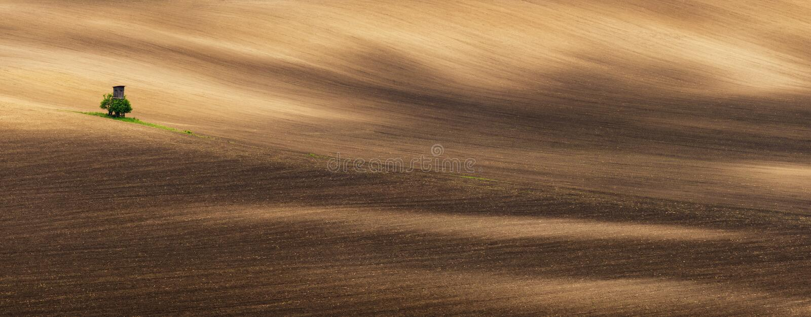 Panoramic View Of Beautiful Wavy Cultivated Fields And Hunting Tower In Springtime. Agricultural Landscape With Lonely Tower royalty free stock photo