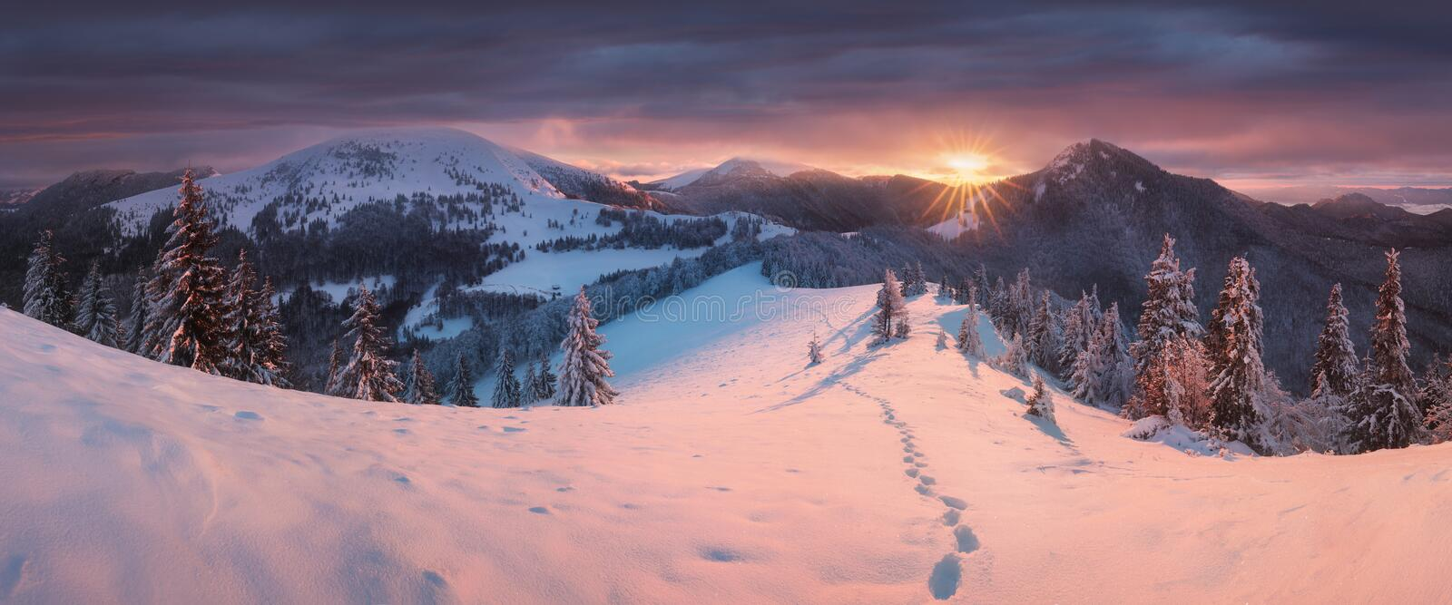 Panoramic view of beautiful winter wonderland mountain scenery in evening light at sunset. Mountains above the clouds. Christmas. Panoramic view of beautiful royalty free stock photo