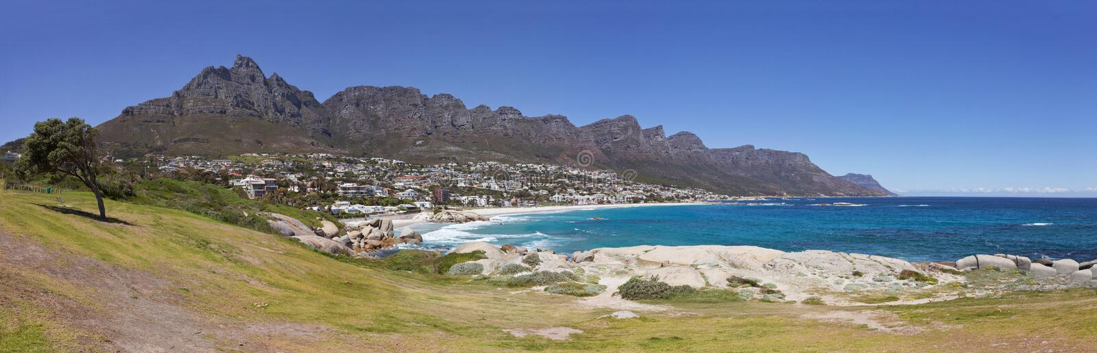 Panoramic view of Camps Bay Beach in Cape Town, South Africa, with green grass, lonaly tree and the Twelve Apostles royalty free stock image