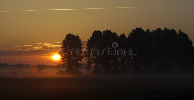 Panoramic view of colorful sunrise over wetlands and meadows wildlife refuge by the Biebrza river in Poland royalty free stock photos