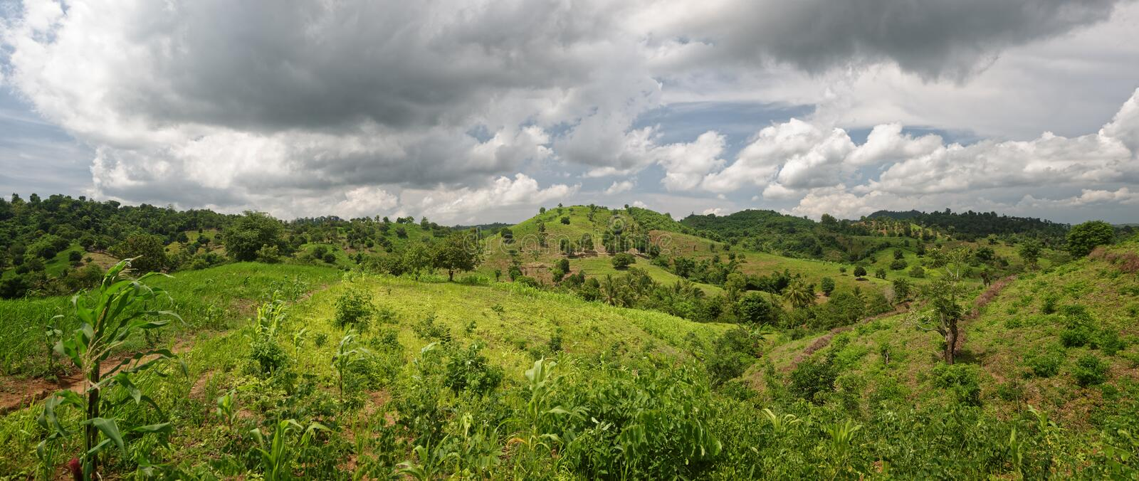 Panoramic view countryside in sunny day. Panoramic view of the hilly countryside on a sunny day stock photography
