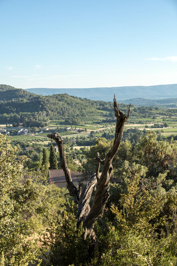 Panoramic view of cultivated fields, vineyards and mountains in Provence stock image