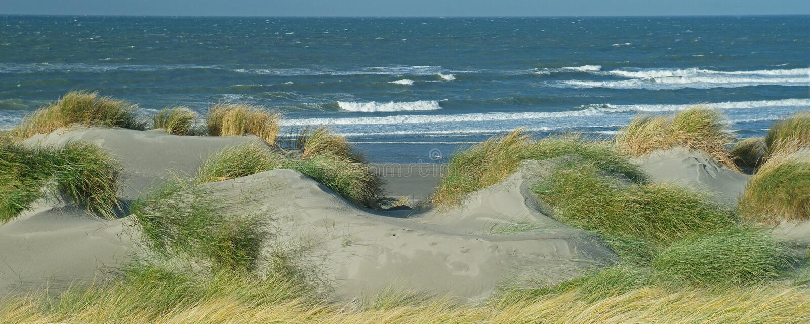 Panoramic view with dunes, beach and North Sea waves royalty free stock photos