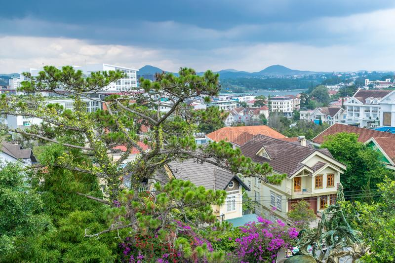 Panoramic view of green tree with flowers and roof of houses with sky before rain stock photo