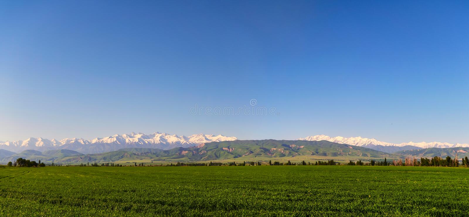 Mountain landscape. Fresh green meadows at sunrise in springtime, mountains lit by the rising sun. Panoramic view of the idyllic mountain landscape. Fresh green stock photos