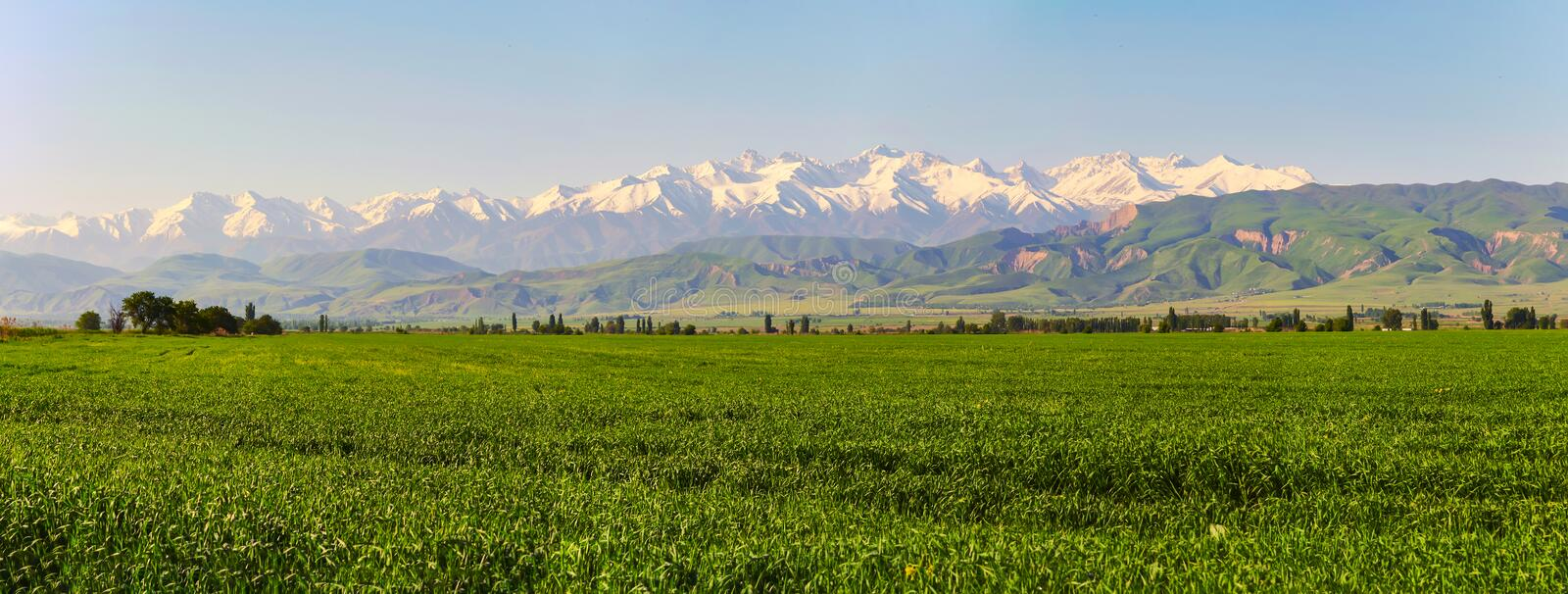 Mountain landscape. Fresh green meadows at sunrise in springtime, mountains lit by the rising sun stock image