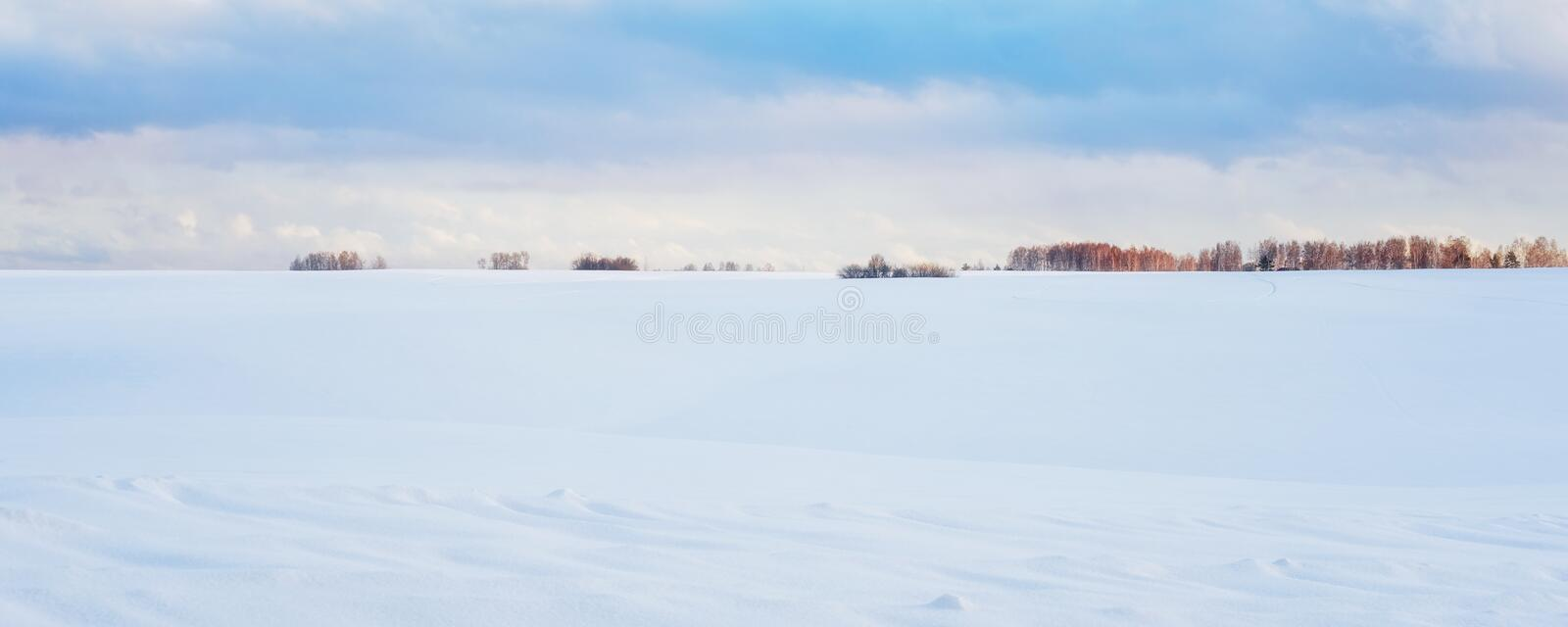 Panoramic View of Idyllic Winter Scenery: Frosty Landscape with Snowdrifts stock photography