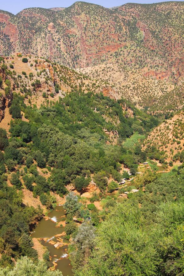 Panoramic view into  canyon with river, conifer trees and red mountain face dotted with green plants - Ourika Valley,. Panoramic view into  canyon with river royalty free stock photography