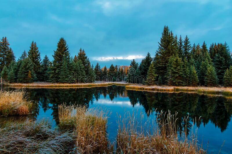Panoramic View of Lake in Forest royalty free stock photo