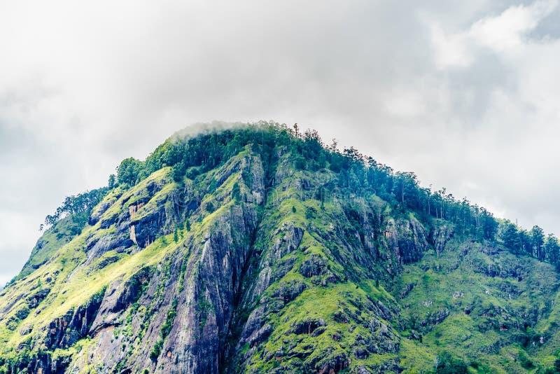 Panoramic view from little Adams peak to Ella rock in Ella, Sri Lanka stock photo