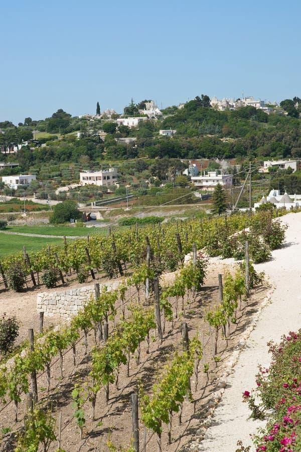 Panoramic view of Locorotondo. Puglia. Italy. View of Locorotondo. Puglia. Italy royalty free stock photos