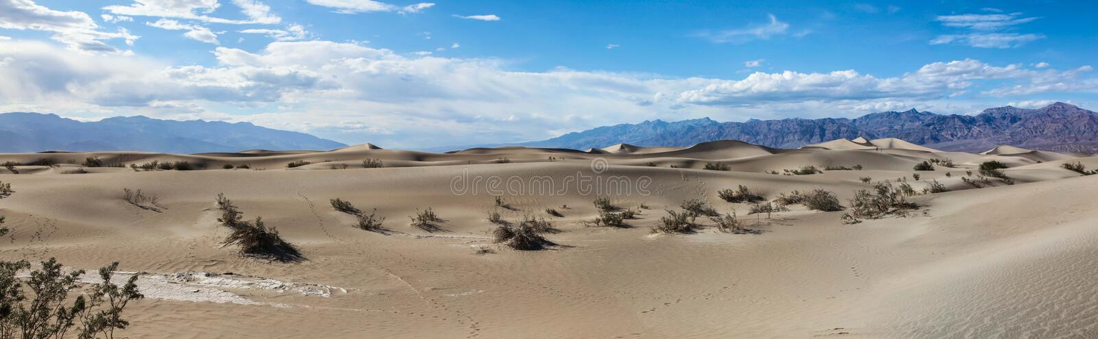 Panoramic view of the pristine sand of the Mesquite Flat Sand Dunes in Death Valley National Park stock photo