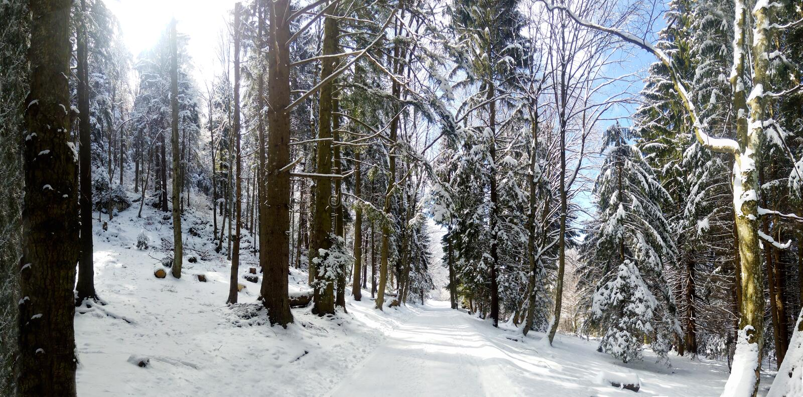 Panoramic view of a mountain roud on winter royalty free stock photography