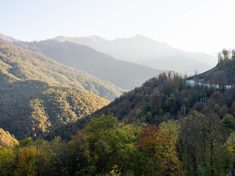 Panoramic view of the mountains covered with autumn forest at sunrise royalty free stock photo
