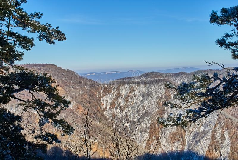 Panoramic view of the mountains. In the foreground are branches of snow-covered trees, against the background is a clear blue sky. Lago-Naki, The Main royalty free stock photos