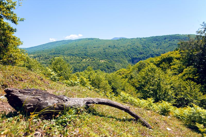 Panoramic view on mountains green valley. Natural summer background stock image