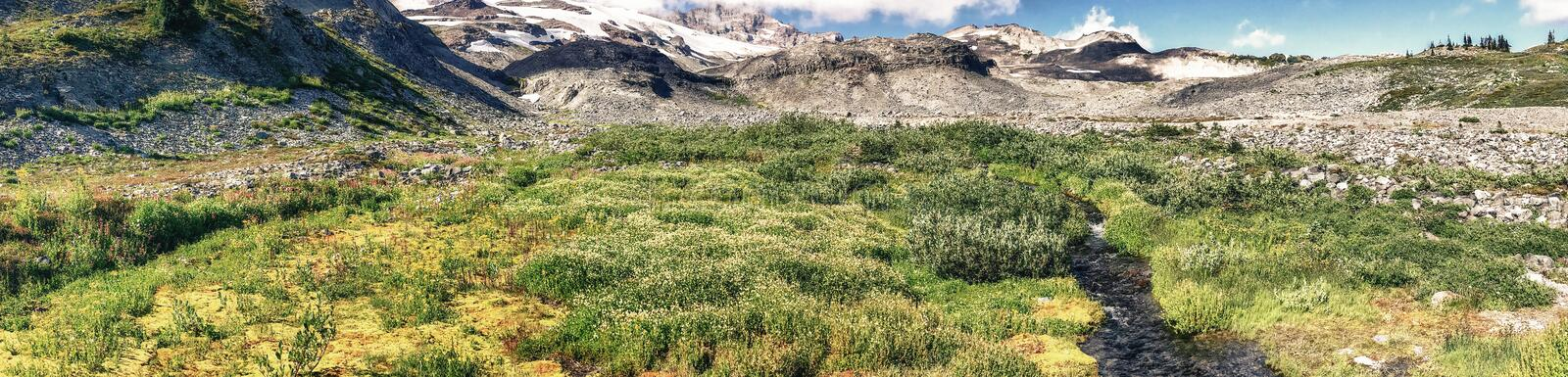 Panoramic view of Mt Rainier landscape on a beautiful summer day royalty free stock photos