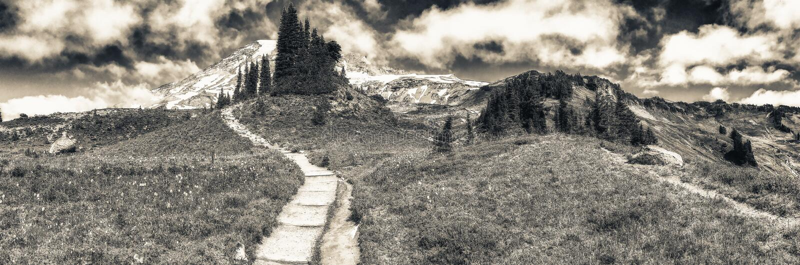 Panoramic view of Mt Rainier trails on a beautiful summer day royalty free stock images