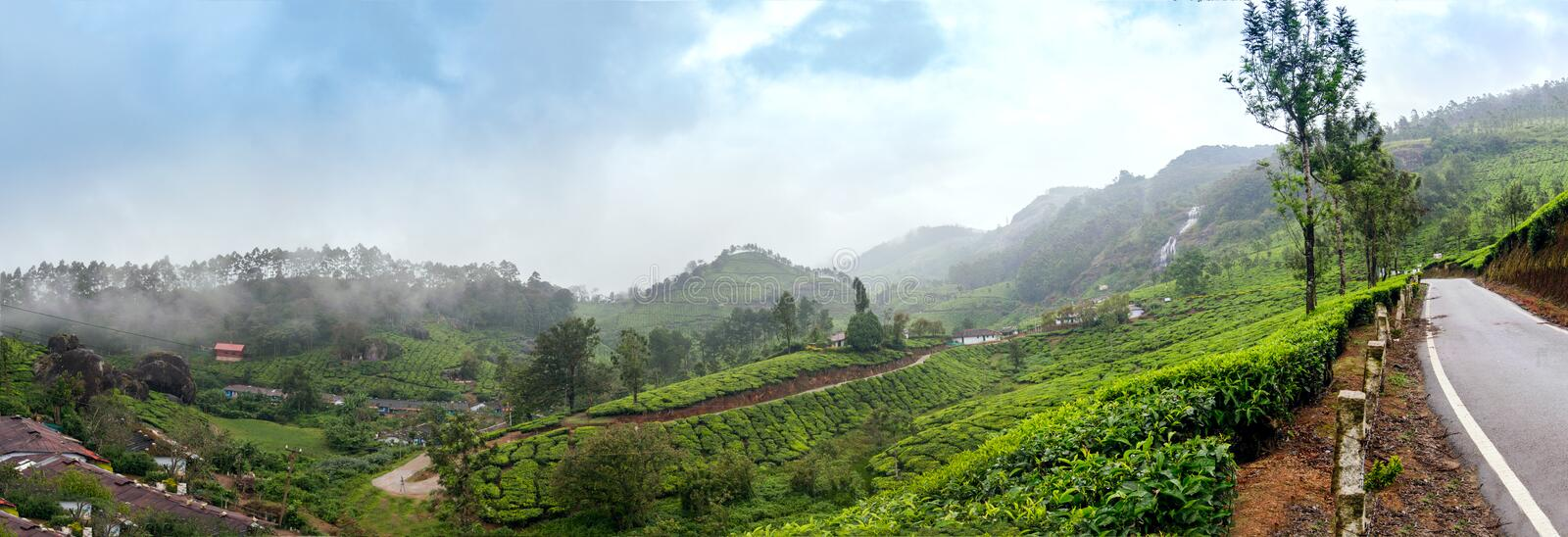 Panoramic view in Munnar in western Ghats, Kerala royalty free stock photo
