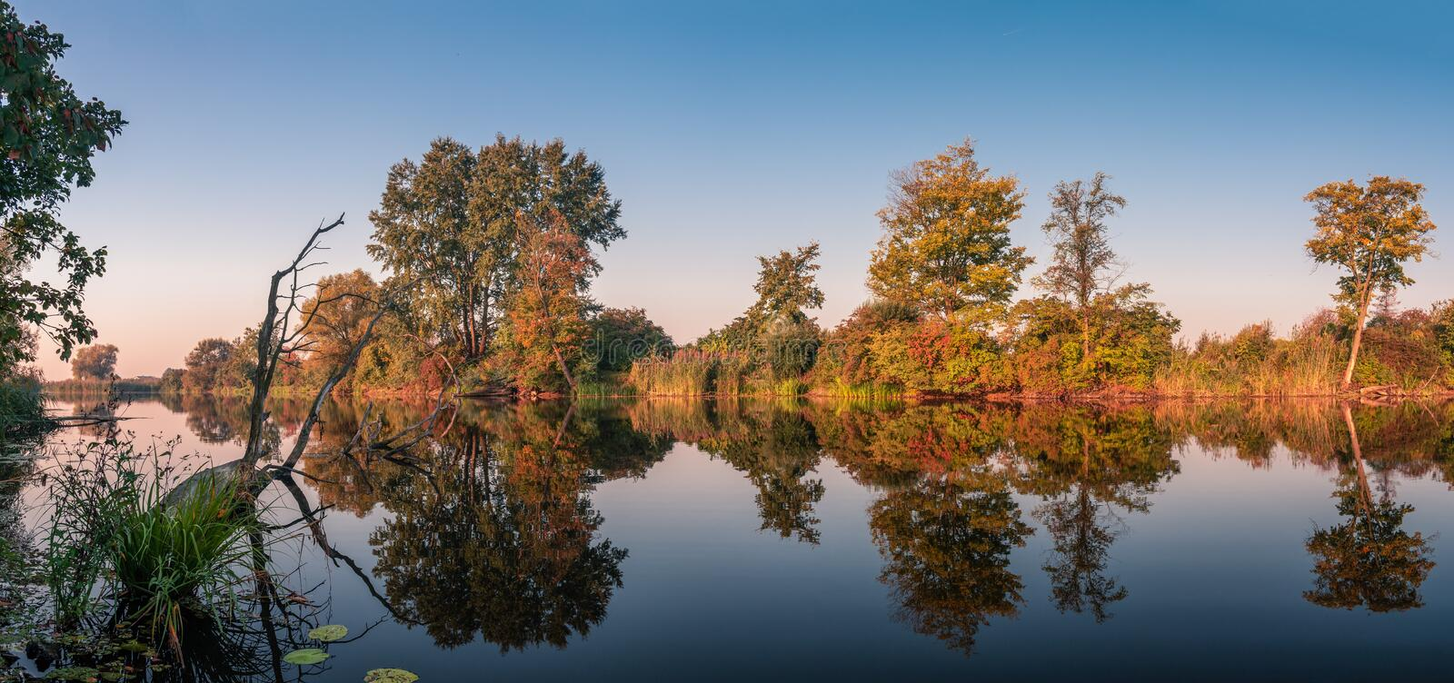 Natural lake scenery during autumn / fall season with colorful trees. Panoramic view on the natural lake early in the morning during autumn / fall season with royalty free stock photography