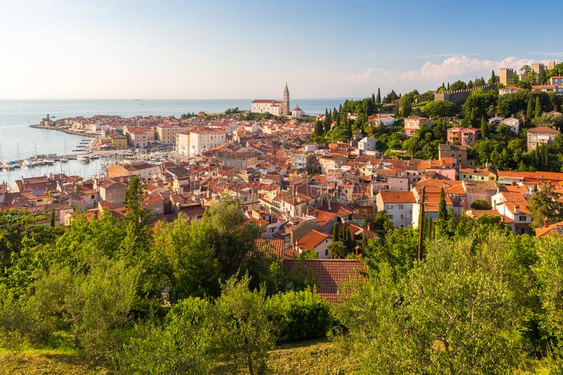 Panoramic view of old town Piran, Slovenia, Europe. Summer vacations tourism concept background. royalty free stock photo