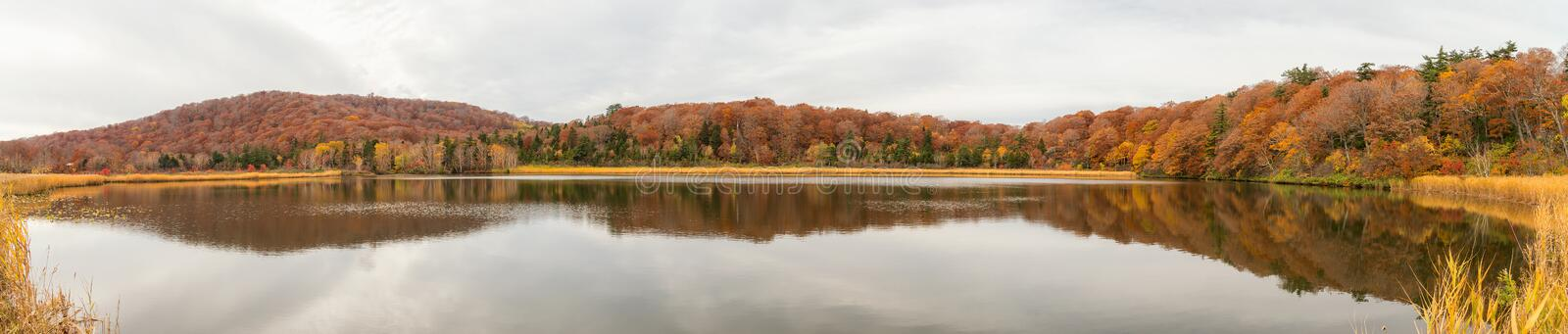 Panoramic view of Onuma pond in autumn season. Panoramic view of Onuma pond in autumn season, Akita, Japan royalty free stock photography