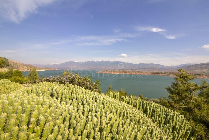 Panoramic view over Barrage Bin El-Ouidane, high Atlas. royalty free stock photo