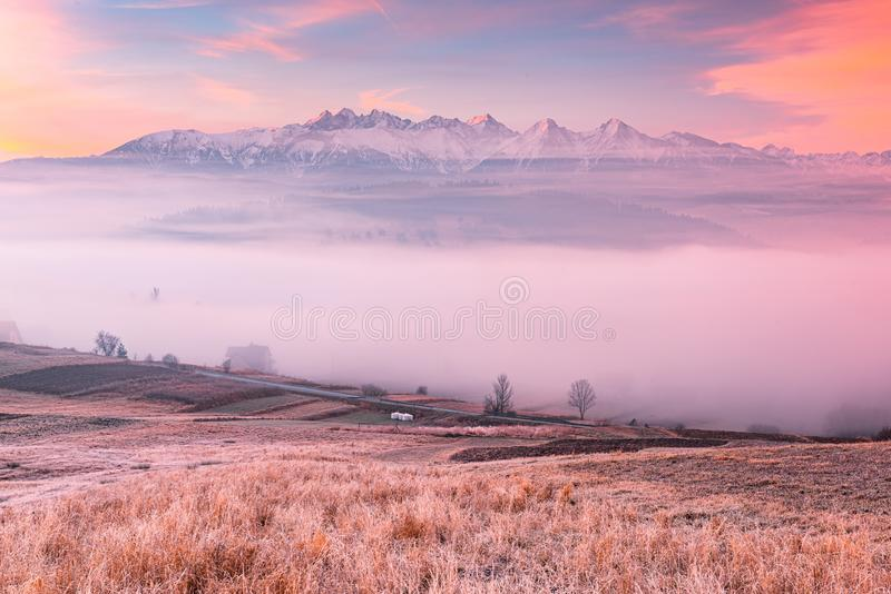 Panoramic View over Tatra Mountains in Snow over Fog at Sunrise in Pieniny, Polen arkivbilder