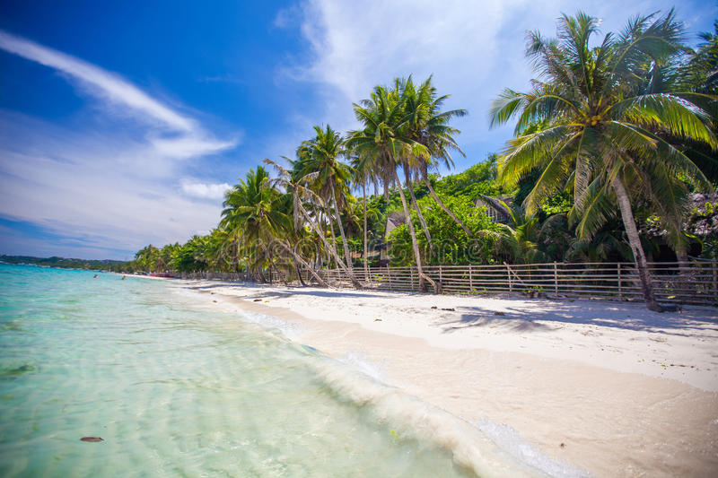 Download Panoramic View Of Perfect Beach With Green Stock Photo - Image: 37653246