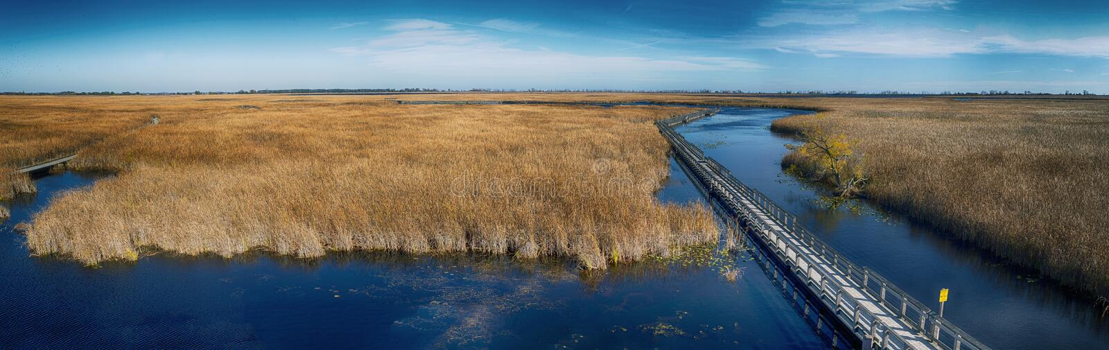 Panoramic view of Point Pelee national park boardwalk in the fall,. Ontario, Canada royalty free stock image