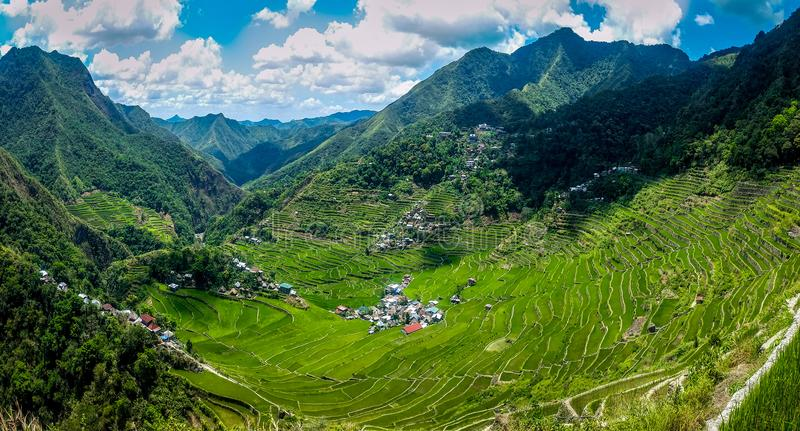 Panoramic view of rice terraces royalty free stock images