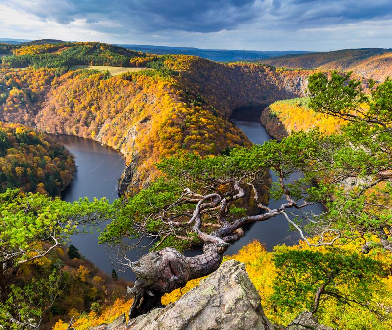 Panoramic view of river canyon with dark water and autumn colorful forest. Horseshoe bend, Vltava river, Czech republic. Beautiful. Landscape with river. Maj royalty free stock photos
