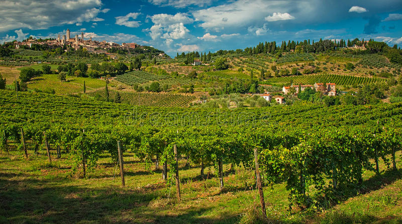 Panoramic view on San Gimignano. One of the nicest villages of Italy stock photography
