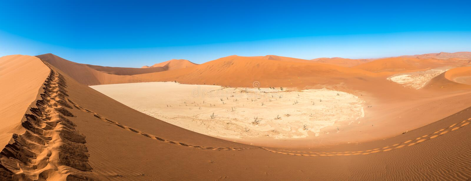 Panoramic view of sand dunes in Deadvlei, Sossusvlei, Namibia royalty free stock photos