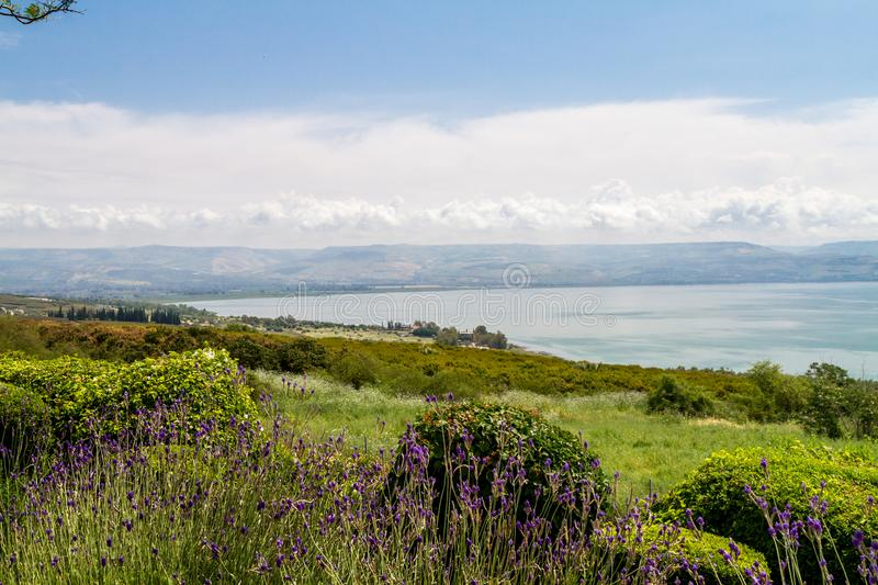 Panoramic view of the sea of Galilee from the Mount of Beatitudes, Israel royalty free stock images