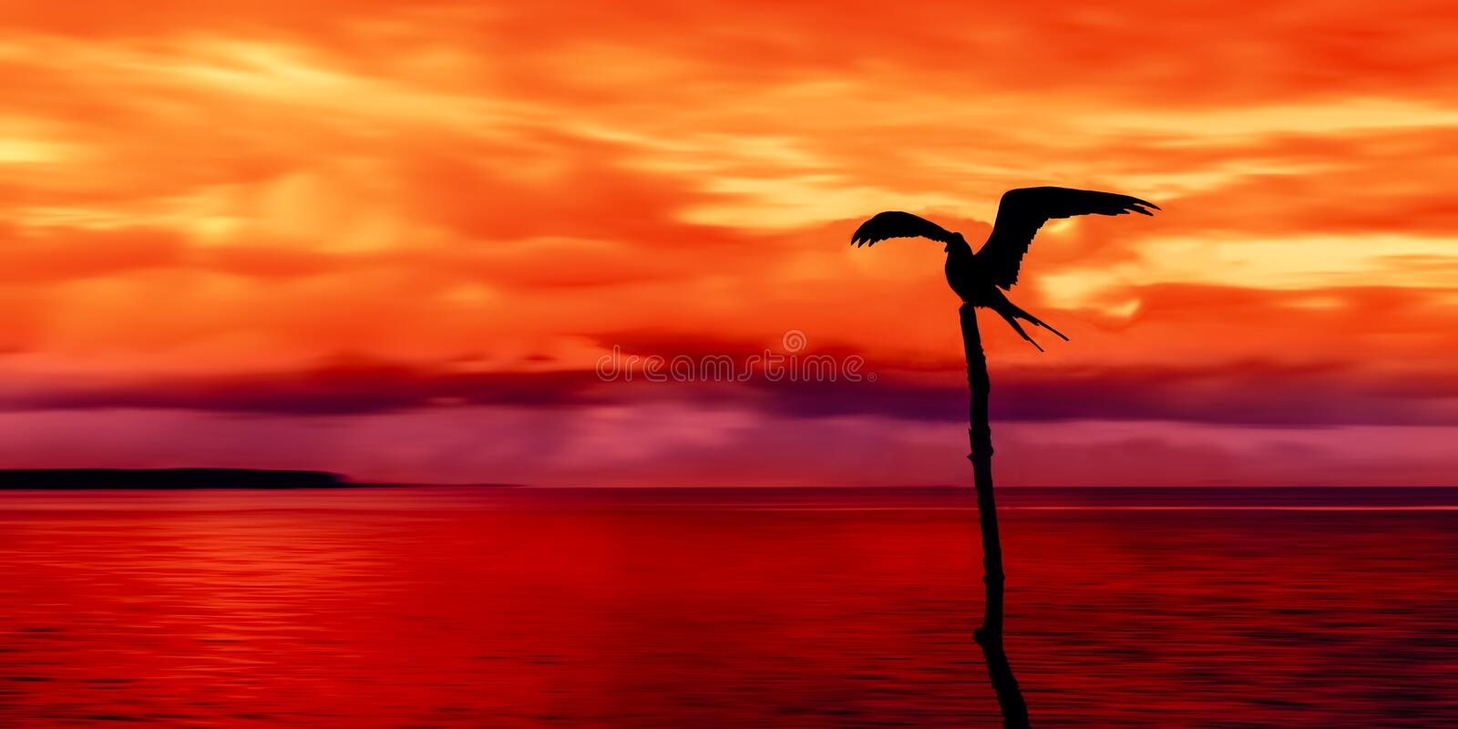 Panoramic view of sea and sky and a seabird silhouette Trinidad and Tobago at dusk stock photos