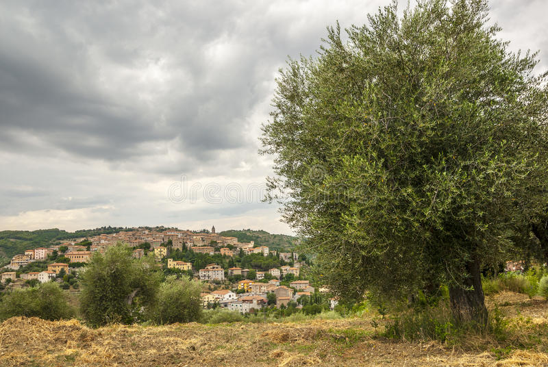 Panoramic view of Seggiano, in Tuscany