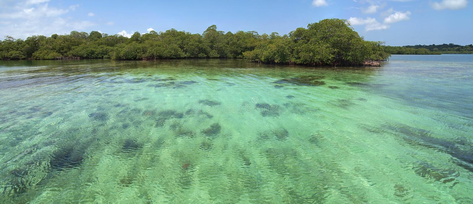 Panoramic view on shallow water royalty free stock image