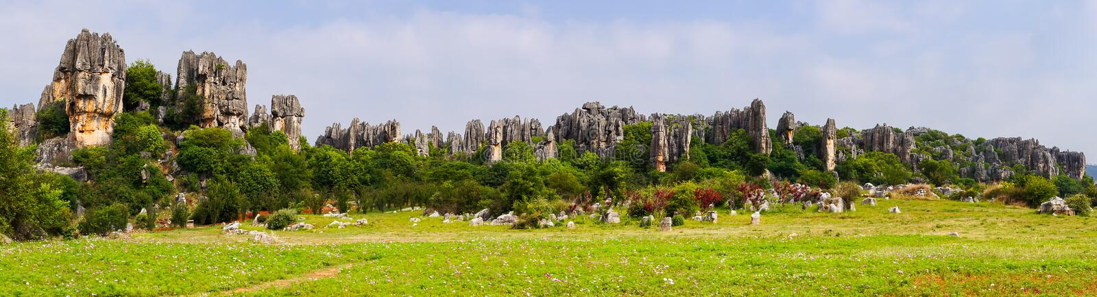 Panoramic view of Shilin limestone pinnacles Stone Forest - Yunnan, China stock photography