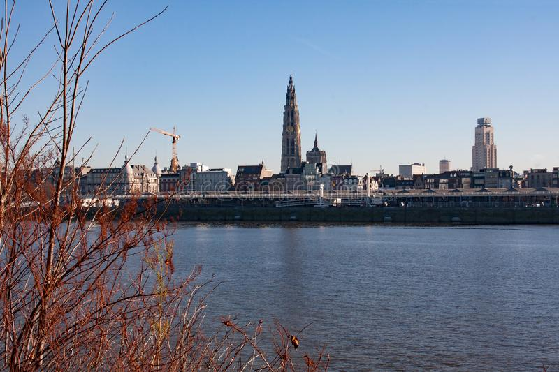 Panoramic view of the skyline of Antwerp royalty free stock photo