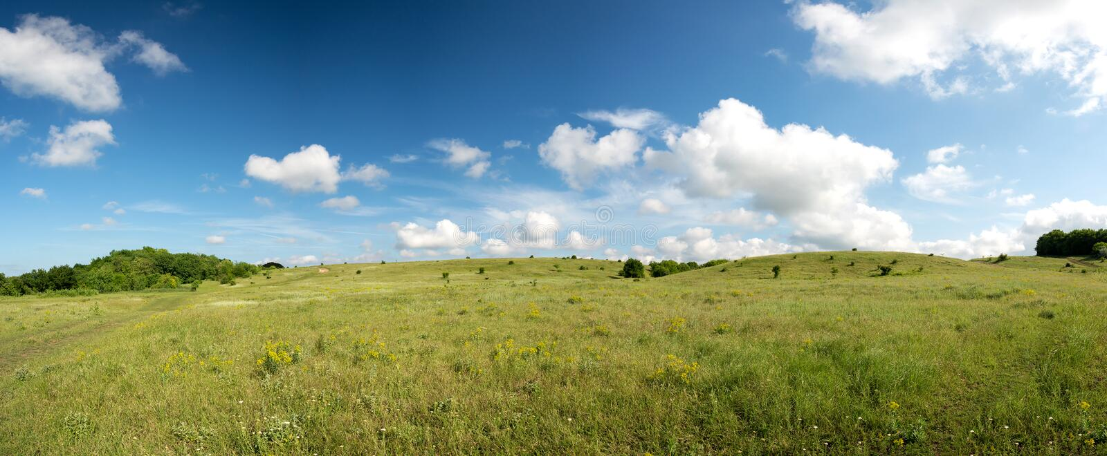 Panoramic view of spring landscape with blue sky and green lawn. Space for text stock images