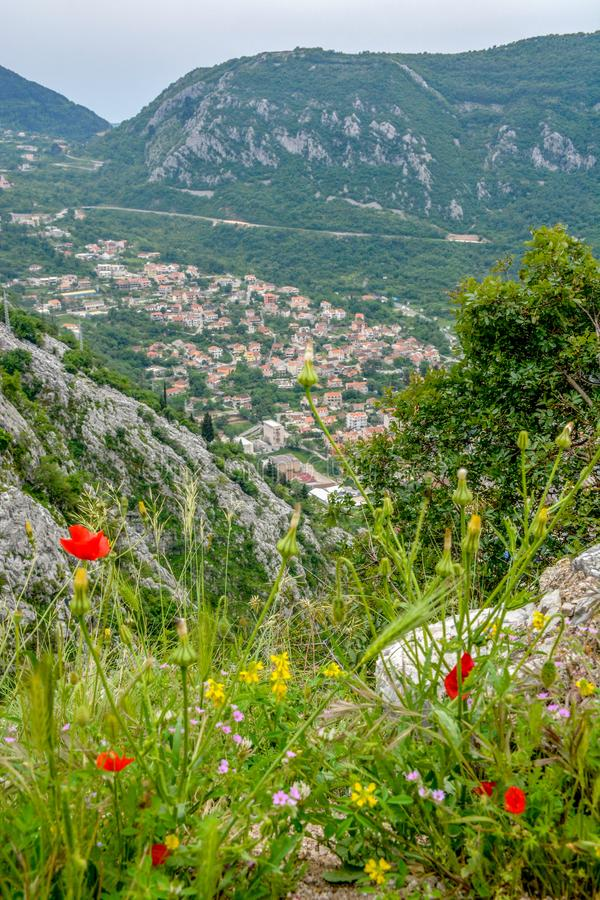 Aerial view of Kotor, Boka Kotorska Bay, Montenegro. Panoramic view from the stone top of the mountain on the gulf and houses in the city between the mountains stock photography